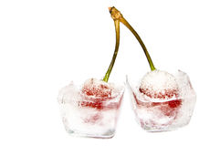 Frozen cherries. Close-up of two frozen cherries on white royalty free stock photography