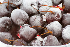 Frozen cherries In a plastic box on a white table. Close up Royalty Free Stock Photos