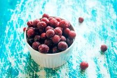 Frozen cherries Stock Image