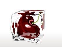 Frozen cherry Stock Images