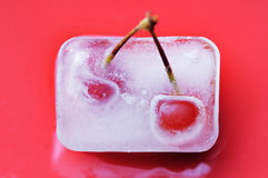 Frozen cherry. Stock Images