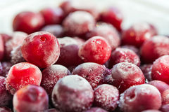 Frozen cherry berries Royalty Free Stock Photo