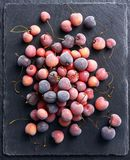 Frozen cherry on black slate. Top view. High resolution product. Healthy food Stock Photo