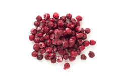 Frozen cherry Royalty Free Stock Images
