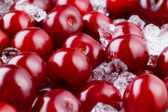 Frozen cherry with ice. Food background Royalty Free Stock Images
