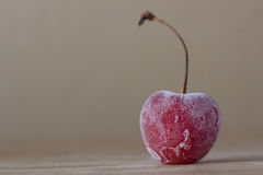 Frozen cherry Royalty Free Stock Photography