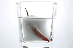 A frozen chili Stock Photo
