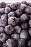 Frozen Chokeberry, Aronia. Frozen black Choke-berry Closeup Stock Image