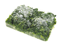 Frozen chopped spinach Stock Image