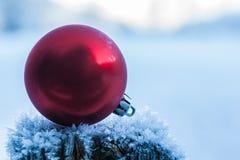 Frozen christmas Royalty Free Stock Photos