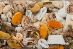 Free Frozen Chunks Of Seafood Or Sea Cocktail Royalty Free Stock Photography - 111052087