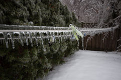 Frozen clothes line after ice storm Royalty Free Stock Images