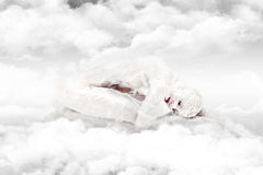 Frozen in the clouds Royalty Free Stock Photography