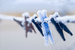 Frozen colorful clothes-pins at winter morning Royalty Free Stock Image