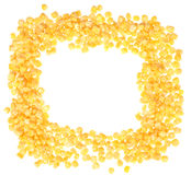 Frozen corn Royalty Free Stock Image