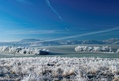 Frozen country Stock Photography