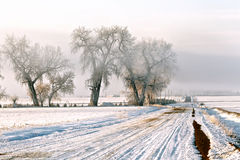 Frozen country road. Snowy Country Road in Colorado stock images