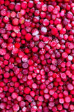 Frozen cowberries Royalty Free Stock Photography