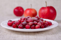 The frozen cowberry. On a linen napkin against three red apples Stock Photos
