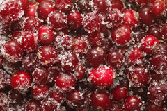 Frozen cowberry. Sprinkled with sugar removed close up Royalty Free Stock Photos