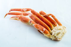 Frozen crab claws Stock Image