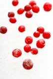 Frozen cranberries Stock Photo