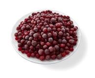 Frozen cranberries. Stock Photo
