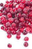 Frozen Cranberries Stock Images