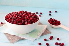Frozen Cranberries in Bowl on blue desk. Frozen Cranberries in white porcelain bowl on blue wooden desk with spoon full of berries Royalty Free Stock Image