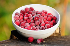Frozen Cranberries in Bowl on Tree Stump Royalty Free Stock Photo