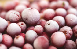 Frozen cranberries. Red frozen cranberries close-up stock photos