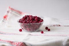 Frozen cranberry berries in a plate on a white tablecloth.  Stock Images