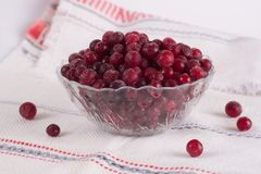Frozen cranberry berries in a plate on a white tablecloth.  Stock Image