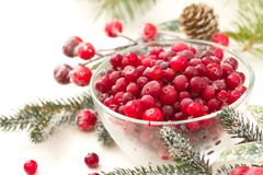 Frozen cranberry in a bowl Royalty Free Stock Image