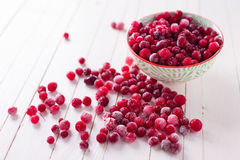 Frozen cranberry Royalty Free Stock Photography
