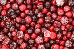 Frozen Cranberry Stock Photos