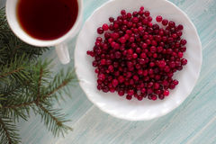 Frozen cranberry, cup of tea top view. Frozen cranberry and cup of tea on wooden background top view with plate, spoon, christmas tree health concept Royalty Free Stock Photos