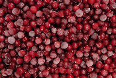 Frozen cranberry Royalty Free Stock Images