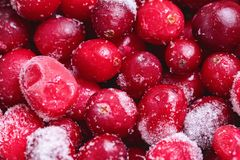 Frozen cranberry pattern. Flat lay, top view, square stock photos