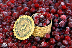 Frozen cranberry  and russian souvenir tuesok Royalty Free Stock Images