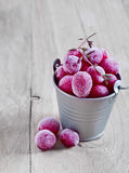 Frozen cranberry. In small bucket on wooden table Stock Photo