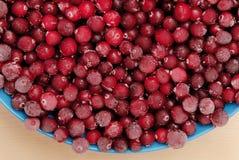 Frozen cranberry Stock Photos