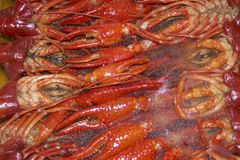 Free Frozen Craw-fish Royalty Free Stock Images - 377369