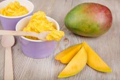 Frozen creamy ice yoghurt  with fresh mango Stock Images