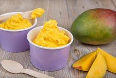 Frozen creamy ice yoghurt  with fresh mango Royalty Free Stock Images