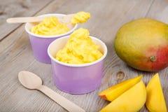 Frozen creamy ice yoghurt  with fresh mango Stock Image