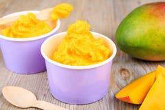 Frozen creamy ice yoghurt  with fresh mango Stock Photos