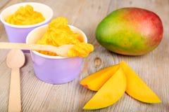 Frozen creamy ice yoghurt  with fresh mango Royalty Free Stock Photography