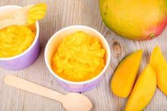 Frozen creamy ice yoghurt  with fresh mango Stock Photo