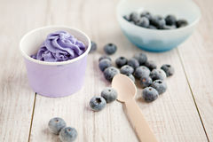 Frozen creamy ice yoghurt  with whole blueberries Royalty Free Stock Image